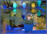 Majorelle garden - Marrakech