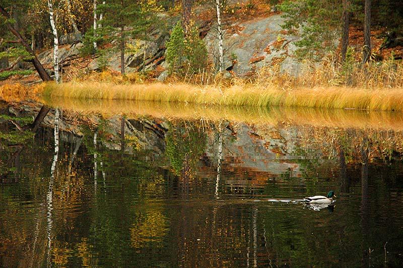 Lake Bylsjön