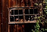 Weathered Window, Near Bethel, Maine