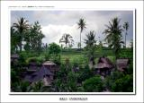 resorts in UBUD