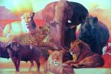 They are known as Africa's Big Five