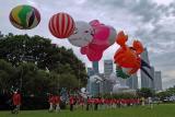 HiFly Balloon Carnival