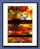 38-The-Glass-Ceiling-copy.jpg