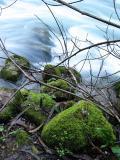 Nascente do rio Liz ... 01