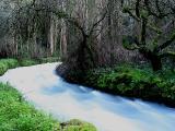 Nascente do rio Liz ... 09