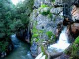 Nascente do rio Alviela ... 03