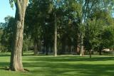 Andover's grounds
