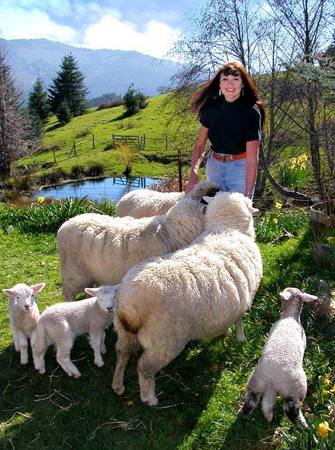Maurine Among Her Sheep