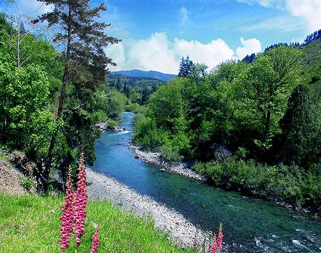 June Day At Deep Creek