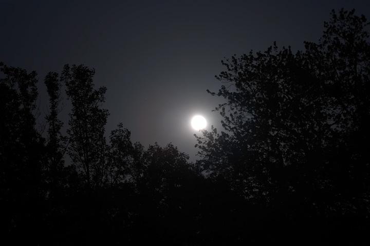 Moonscape.jpg