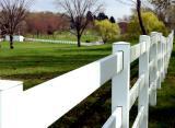 April 25, 2004 - Fence Lines