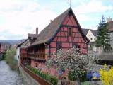 Kaysersberg - Couleurs et colombages