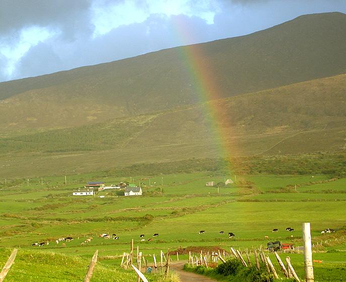 Dingle rainbow