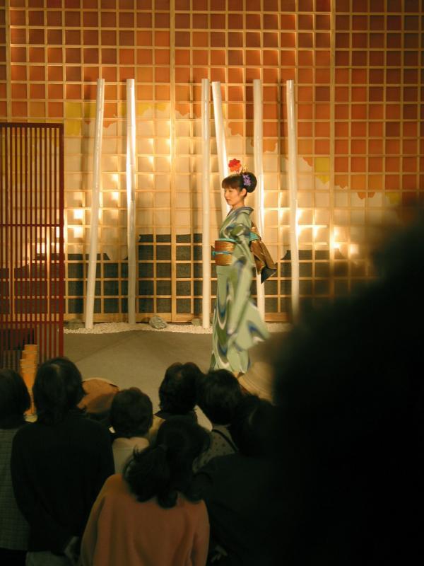 Kimono fashions