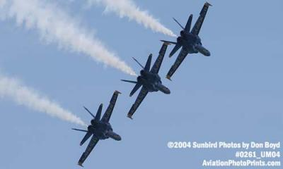 USN Blue Angels F/A-18 Hornets military aviation air show stock photo #0261