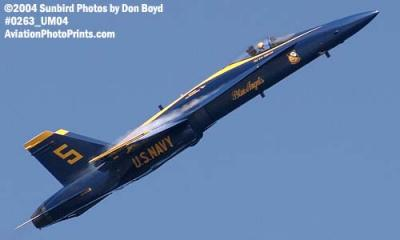 USN Blue Angels F/A-18 Hornet #5 military aviation air show stock photo #0263