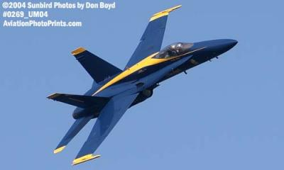 USN Blue Angels F/A-18 Hornet #1 military aviation air show stock photo #0269