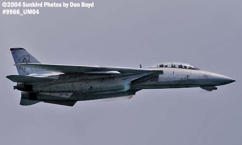 USN F-14 Tomcat high speed pass at Air & Sea Show aviation air show stock photo #9966
