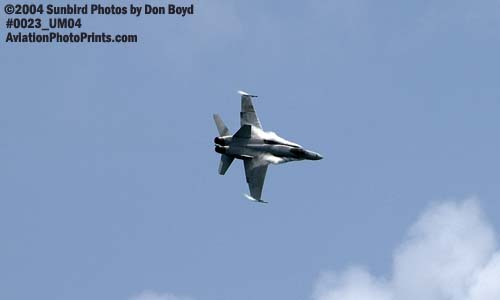 USMC F/A-18 Hornet military aviation air show stock photo #0023