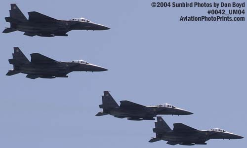 USAF F-15 Eagles at the Air & Sea Show military aviation stock photo #0042