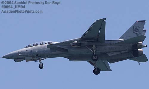 USN F-14 Tomcat military aviation air show stock photo #0094