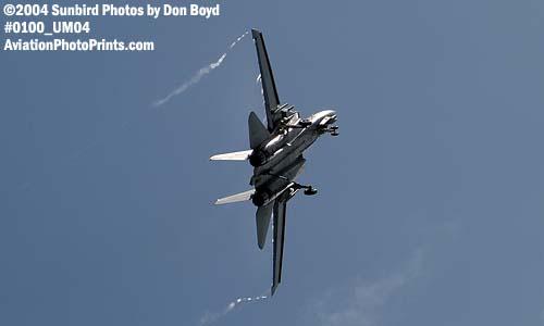USN F-14 Tomcat military aviation air show stock photo #0100
