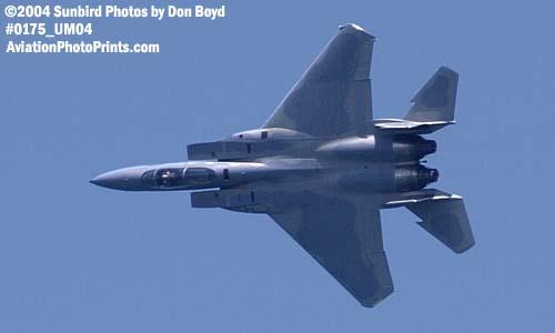 USAF F-15 Eagle #81-022 at the Air & Sea Show - military aviation air show stock photo #0175