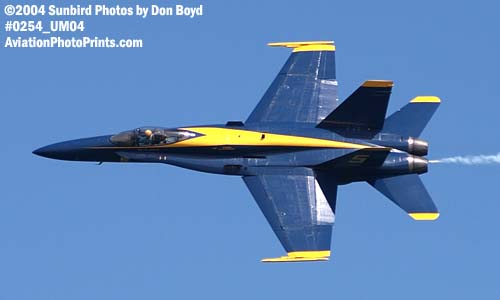 USN Blue Angels F/A-18 Hornet #5 military aviation air show stock photo #0254
