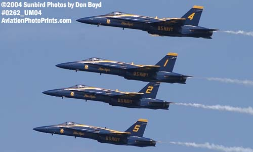 USN Blue Angels F/A-18 Hornets military aviation air show stock photo #0262