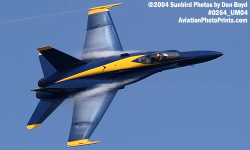 USN Blue Angels F/A-18 Hornet #5 military aviation air show stock photo #0264