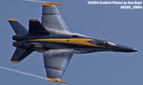 USN Blue Angels F/A-18 Hornet #5 military aviation air show stock photo #0266