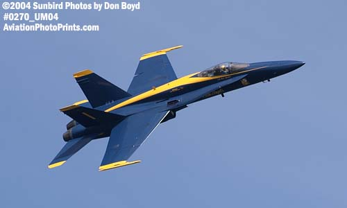 USN Blue Angels F/A-18 Hornet #1 military aviation air show stock photo #0270