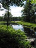 Quabbin Pond 0063