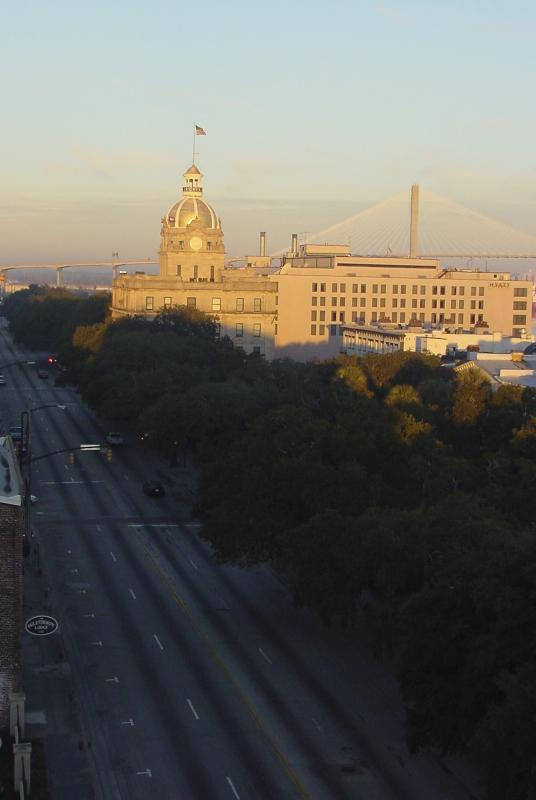 Savannah at sunrise