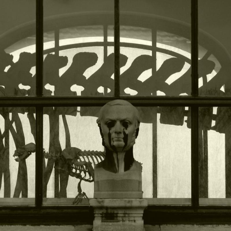 2005-02-16: bones