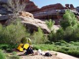Camp in Grand Gulch Utah