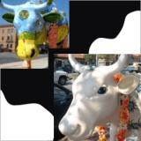 Cow Parade in Kansas City, Missouri