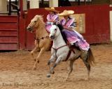 Side-saddle, Full Gallup