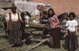 Iznik Gypsy family