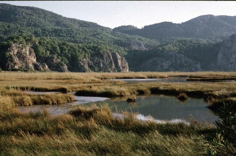 Dalyan near inland lake 1b.jpg