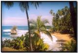 Playa en Gandoca-Manzanillo