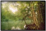 Río Sirena en Corcovado