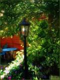 Lover's Garden