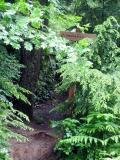 Preston Railroad Grade Trail - Looking for Don Mukai