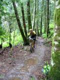 Mt. biker on the Preston RR Grade