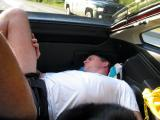 Charlie, zonked out in the back of the CRX