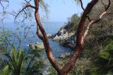 DSC01713 - View of Rio Mascota from Chee-Chee's