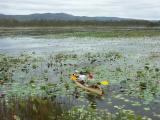 Canoeing on the lagoon, Mareeba Wetlands