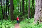 Hagg Lake Trail