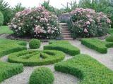 Penshurst - Garden.jpg